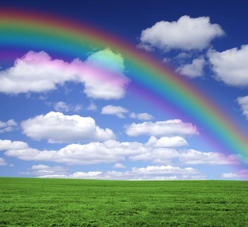rainbow_bedrijfscultuur