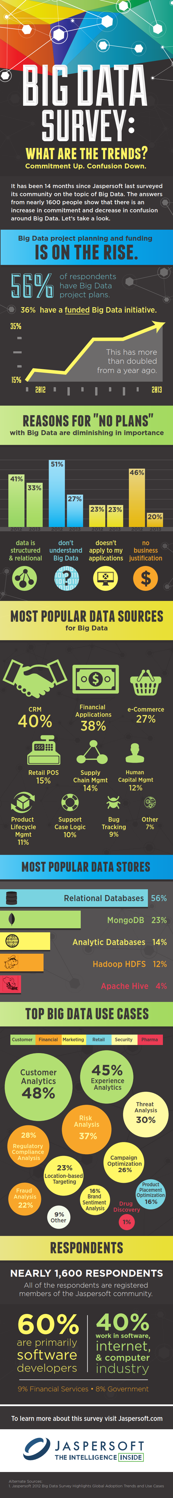 Big-Data-Survey-Infographic-FINAL_001