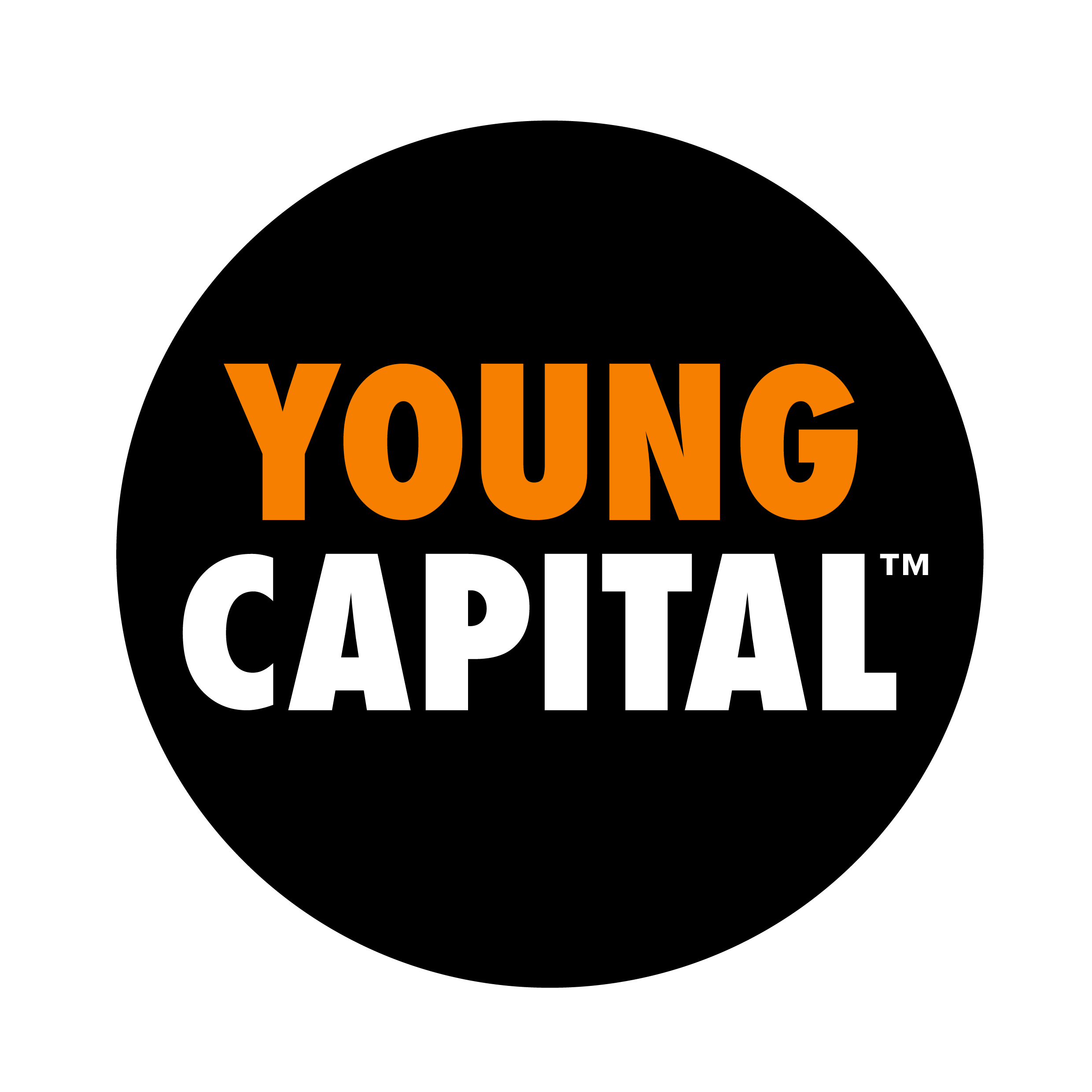 YoungCapital-traineeship tot Big Data Consultant stilt ...