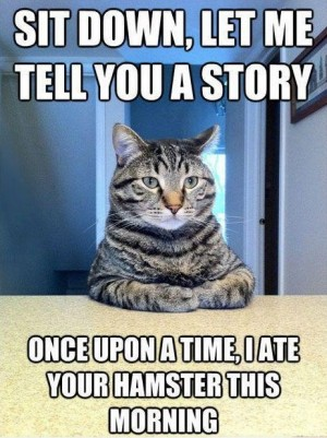 Story-cat-300x401