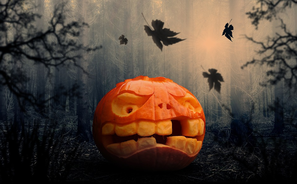 Halloween Utrecht 31 Oktober.60 Nederlanders Koopt Halloween Kostuum Online Emerce