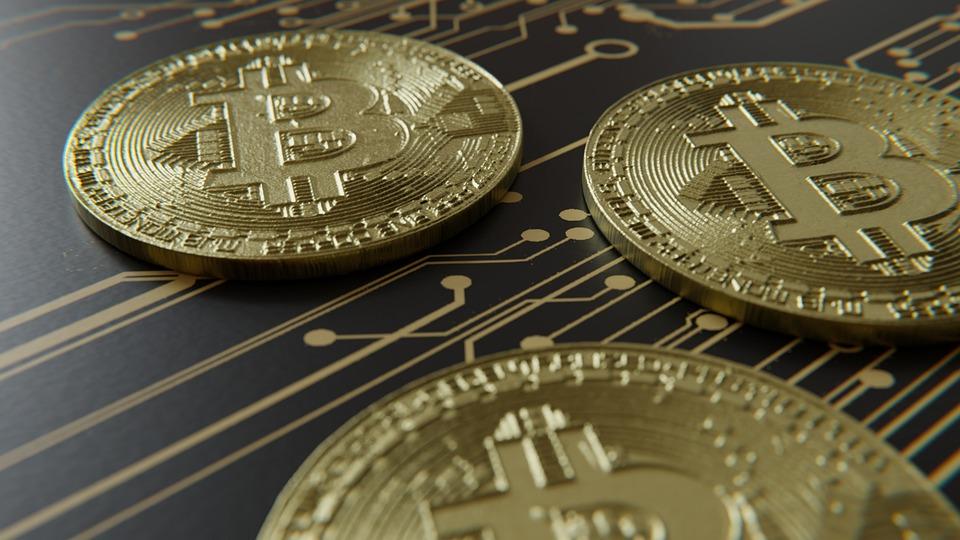 Stiri bitcoin azi Garten-Ideen in | garten,.