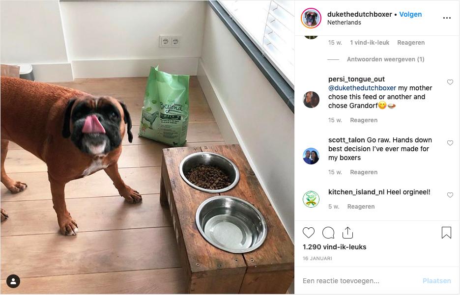 Instagramfoto van dukethedutchboxer