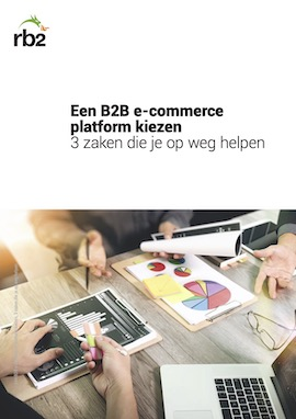 Een B2B e-commerce platform kiezen; 3 zaken die je op weg helpen